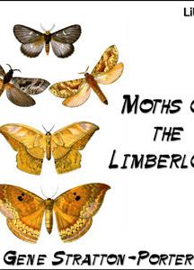 Moths of the Limberlost