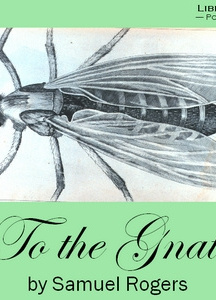 To the Gnat