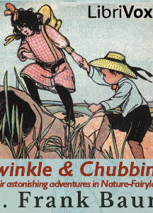 Twinkle and Chubbins; Their Astonishing Adventures in Nature-Fairyland