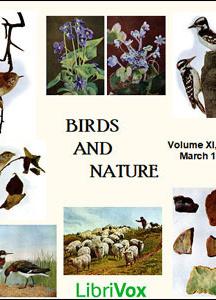 Birds and Nature, Vol. XI, No 3, March 1902